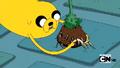 S2e17 Jake moving Princess Plant's roots