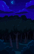 S7e35 Forest shot