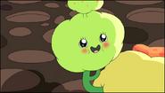 Dimpleplant7