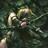 TylwythTeg's avatar