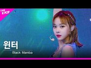 -페이스캠- 에스파(aespa) - Black Mamba 윈터 FOCUS - KOREA-UAE K-POP FESTIVAL