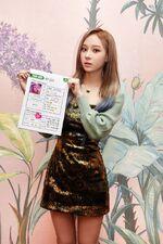 Winter Melon 20.11.17 2