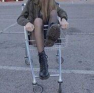 2014 tumblr cart