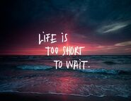 Tumblr sunset quote