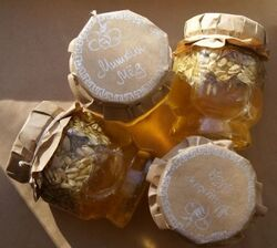 Honeycore.jpg