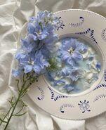 Alexlysko-blue-flowers