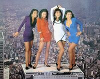 Bodikon ladies posing in Tokyo