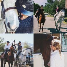 Equestrian Aesthetic .jpg