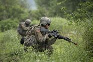 Marines-in-field