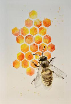 Hexagonbee.jpg
