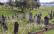 Sg graves