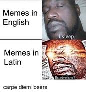 Memes-in-english-i-sleep-memes-in-latin-es-adverisne-37558873