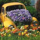 Gardencore