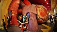 Kid science museum