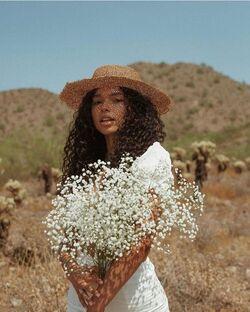 Cottagecore Flowers.jpeg