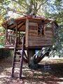 Treehouses - High Life Treehouses.jpg