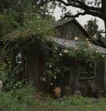 Goth cottage