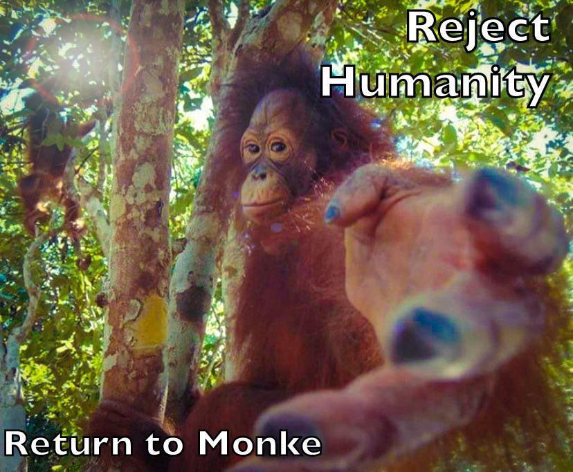 Monkeycore