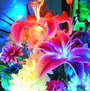 Neon-Flowers