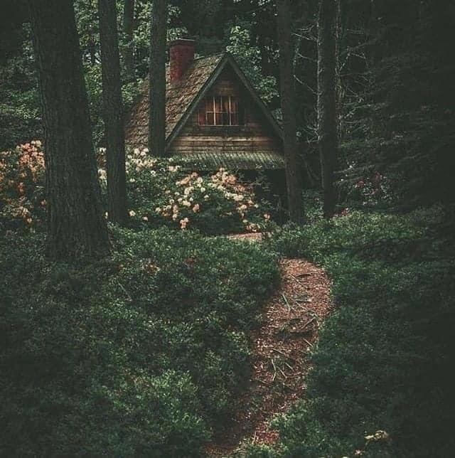 Woodland Goth
