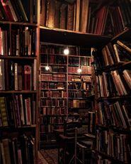 Dark academia library
