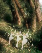 Forestwithfairies