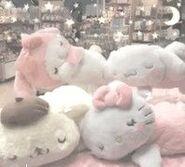 Sanrio teddy's