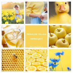 Duckcore Moodboard 2.jpg