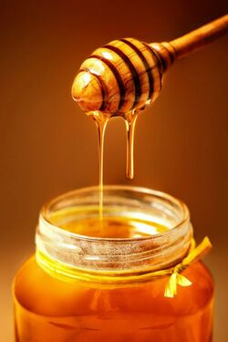 Beautiful Honey.jpg
