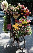 Peoplehood bike