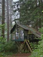 Smallish treehouse with plenty of lighting in the Black Forest, Germany