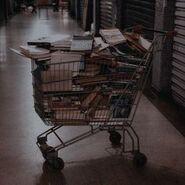Chaotic academia cart