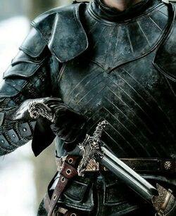 Knight 1.jpeg