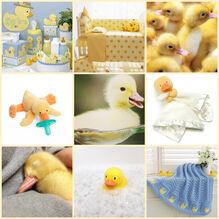 Duckcore Moodboard.jpg