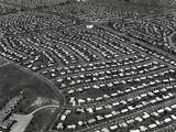 1950s Suburbia