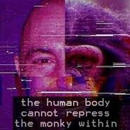 Monkey-bezos