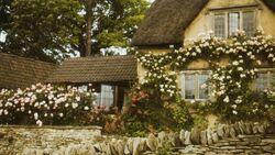 Cottagecore House.jpg