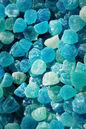 Bluegumdrops