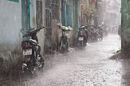 Raincore image