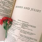 Romeo-juliet-carnation-flower-title-page-book