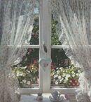 Cottagecore Window