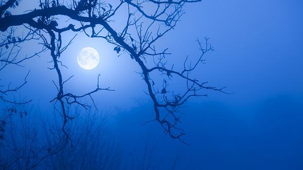 Nightcore.jpg