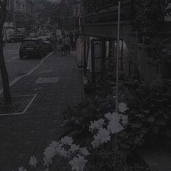 Darkboredom.jpg