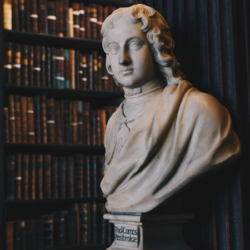 Dark Academia-Statue and Bookshelf.webp