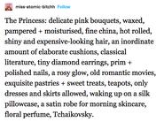 The princess text