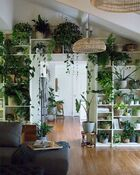 Plant wall in living room