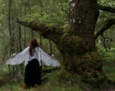 Fairy Wings Cicada natural white costume cape costume Festival Clothing Gelfling Dark Crystal cottagecore clothing