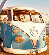 Vsco bus