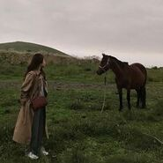 With horse
