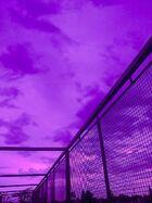 Purple cotton candy dreams